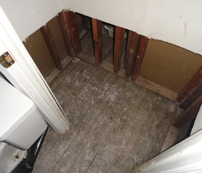 Salisbury Water and Mold Damage After