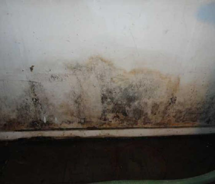 Salisbury Water and Mold Damage Before