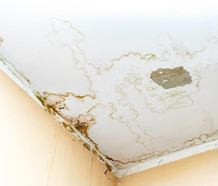 a white ceiling showing water damage with brown staining