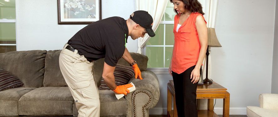 Ocean City, MD carpet upholstery cleaning